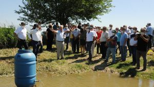 ADÜ Ziraat Fakültesi'nde gübrelemede sulamaya bağlı kayıpların önlenmesi için çalışma yapıldı