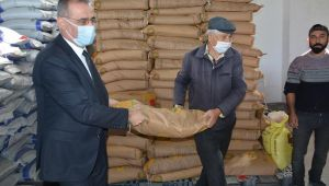 Aydın'da 140 ton fiğ ve arpa tohumu dağıtımı yapılıyor