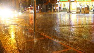 Aydın'da uzun aradan sonra gerçekleşen yağışlar sevindirdi