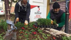 Efeler Belediyesi, muhtarlıkları çiçeklendirdi